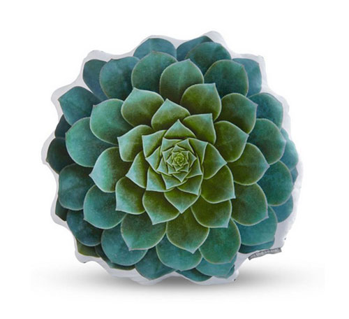 handmade sateen succulent cushion blue echeveria